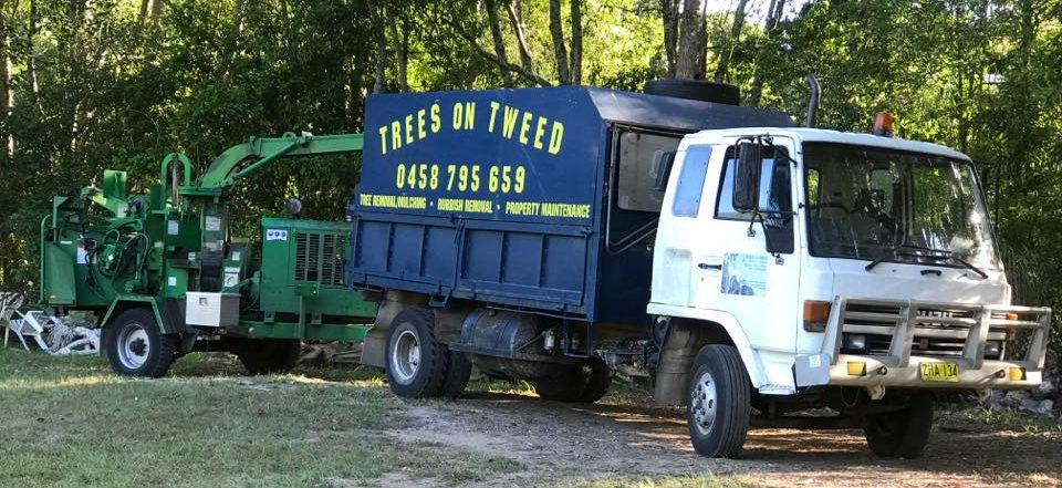 Trees On Tweed Truck